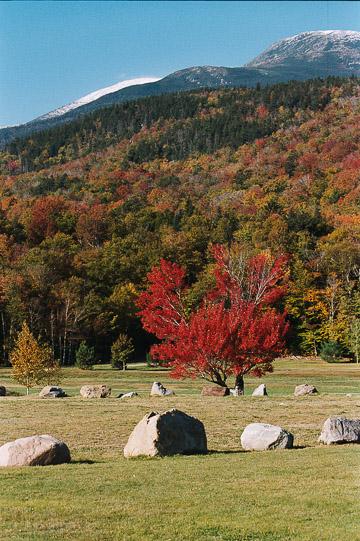 2003-24-031.jpg