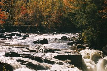 2003-26-012.jpg