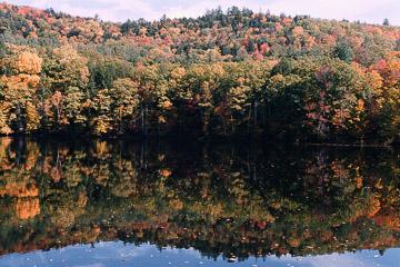 2003-27-021R.jpg